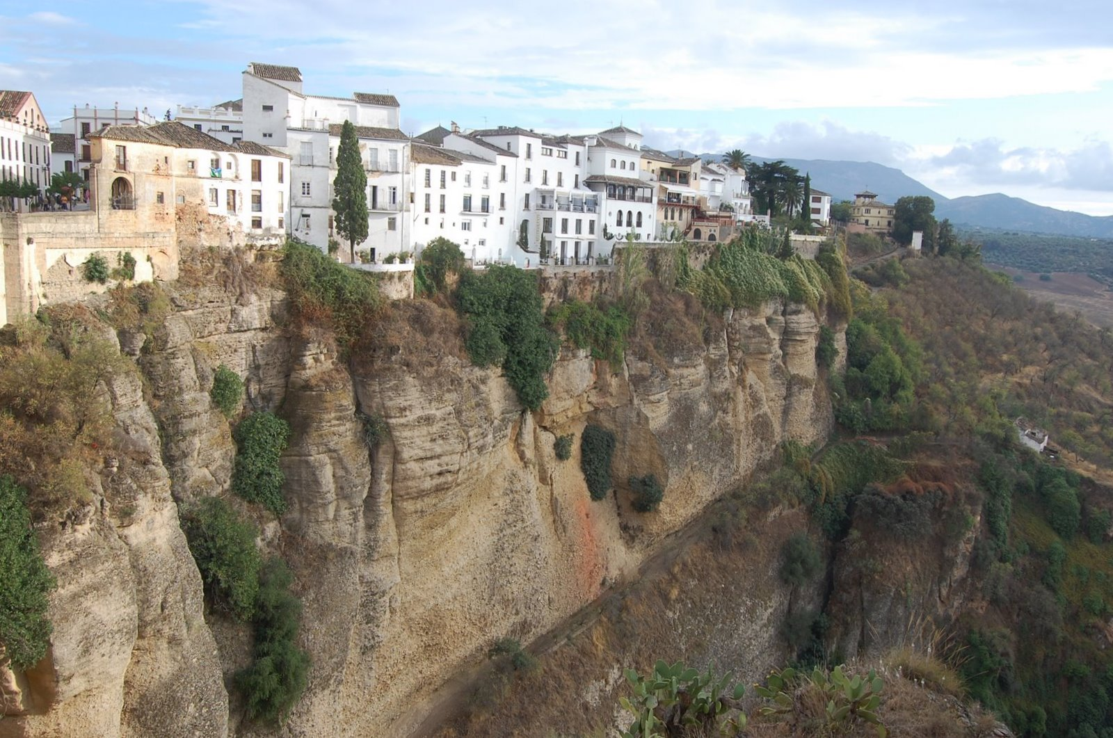Ronda Spain  city photo : The Natural History of Ronda, Malaga, Spain